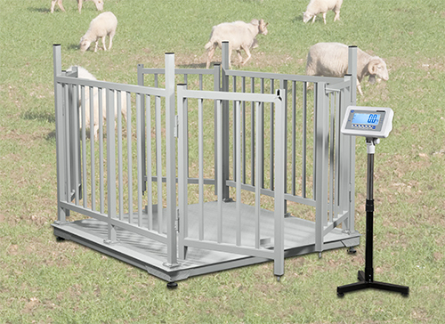 Approved livestock animal weighing scales in uganda