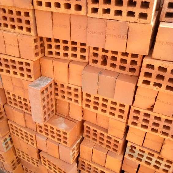 The selected bricks